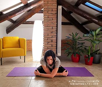 esercizio stretching mastro del cuore triplice focolare