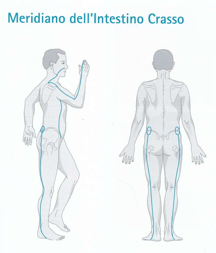 Meridiano di intestino crasso
