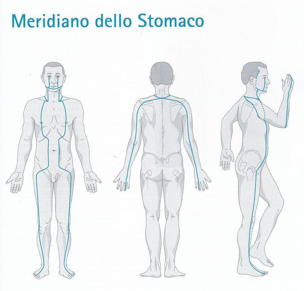 Meridiano di stomaco - percorso
