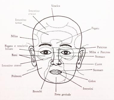 macrobiotica mappa viso